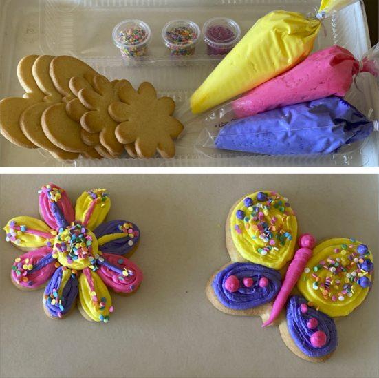 Butterfly DIY Cookie Kit