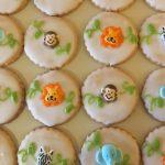 Iced Cookies - Jungle Animals