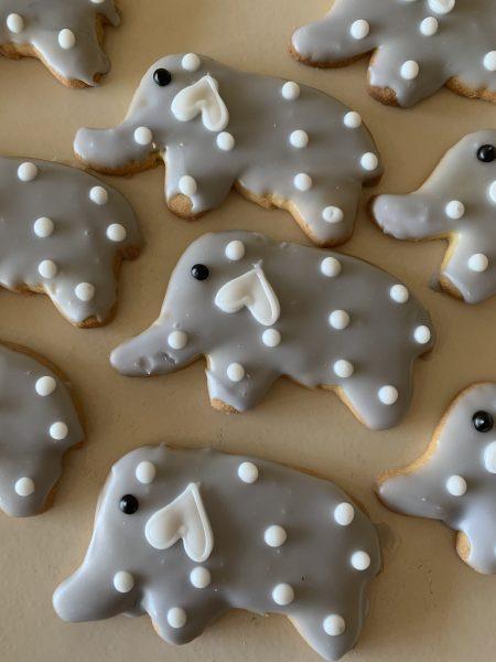 Iced Cookies - Elephants