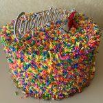 Graduation Sprinkle Cake 2021